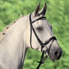 Bridle LIFESTYLE for ponies