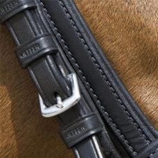 Bridles and Accessories
