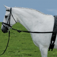 Side reins with rubber rings