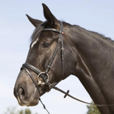 Bridle ERGONOMIC LINE II