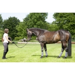 USG Lunging and schooling system