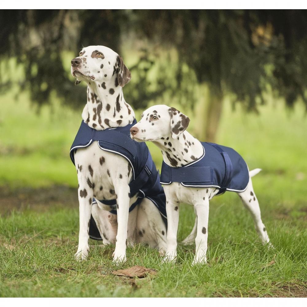 Dog Rain Rug