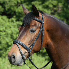 Bridle ERGONOMIC LINE