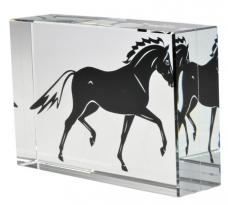 Glass Cube Stallion