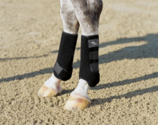 Dressage Boots Pro, hind