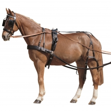 Breeching for Single Harness
