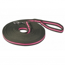 Training Equipment and Lunging