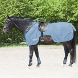 Anti Fly Riding Out Sheet Protect