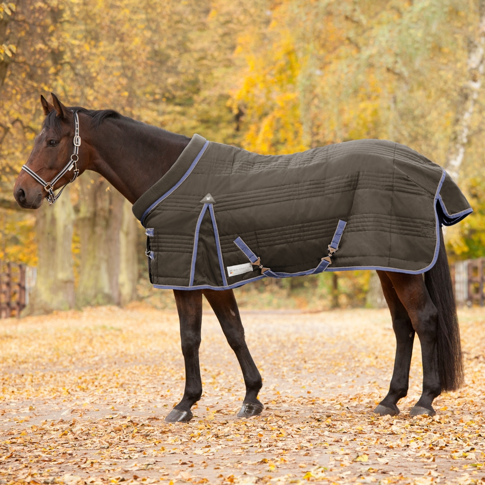 Stable Rug Comfort, 100g