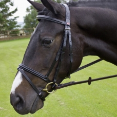 Bridle JW Barton Raised