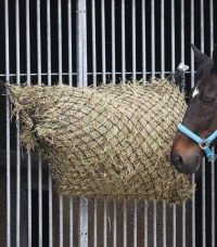 Accessories for Boxes and Paddocks