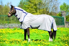 AMIGO® Mio Fly Rug for ponies