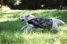 Rambo® Camouflage Dog Blanket