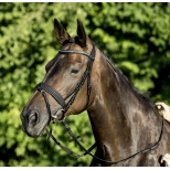 Bridle Aurora Super S
