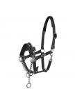 Halter Control with integrated chain