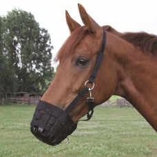 Horse grazing muzzles