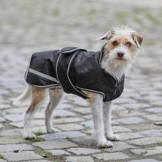 Protection dog coat