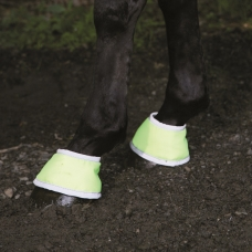 Bandages and Tendon Boots