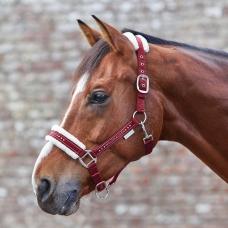 WALDHAUSEN spring/summer 2019  >  FOR HORSE