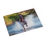 "3D Postcard ""Gallop"""