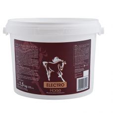 ELECTRO Horse