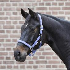 Halter LITTLE HORSE