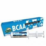 Oral paste BCAA