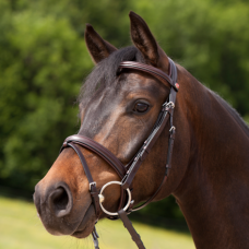 Bridle ERGONOMIC EVENT