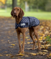 Dot dog coat