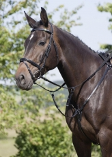 Breast Plate with Martingale Fork
