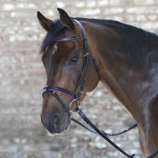 Bridle Diamond for ponies
