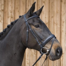 Bridle ERGONOMIC LINE III