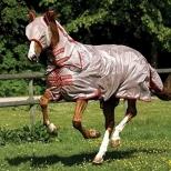 AMIGO® Mio Fly Rug for ponies