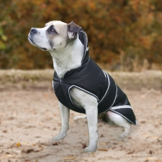 Protection dog coat