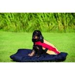 Šiltas flysinis šuns apsiaustas Rambo Newmarket