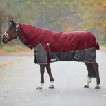 Turnout rug Comfort full neck, 200g