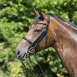 Double Bridle Elite